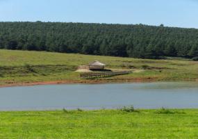 KwaZulu-Natal, ,Land,St Johns Village For Sale,1206